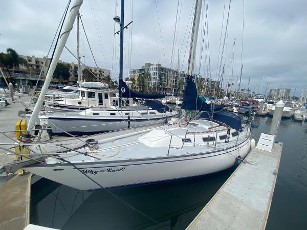Catalina S S 38