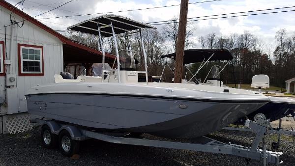 Bayliner F21 Element