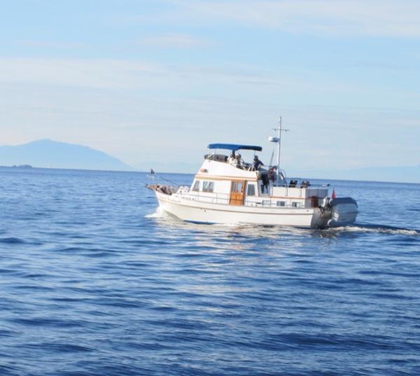 Bristol Tri-Cabin Trawler Island Fantasea at sea