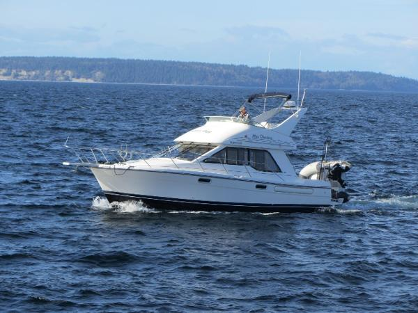 Bayliner 3388 Command Bridge Motoryacht Port bow