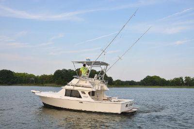 Blackfin 29 Flybridge