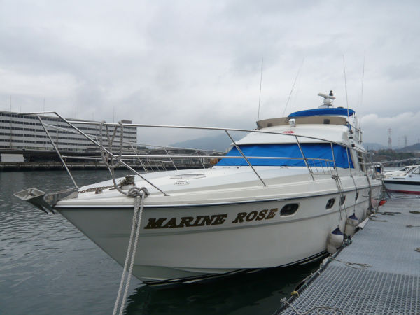 Fairline Fairline 50 Photo 1