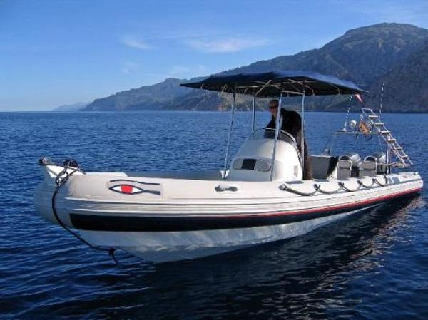 Ribeye S785 Ribeye S785 - with fixed bimini
