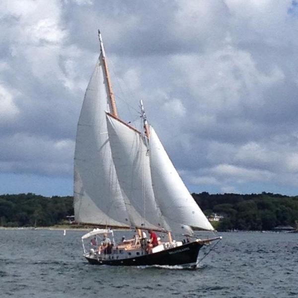 John Atkin 40 Two Masted Schooner Under sail