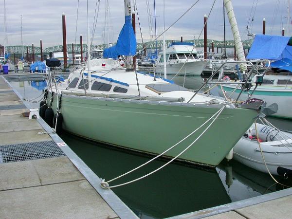 Yamaha 33
