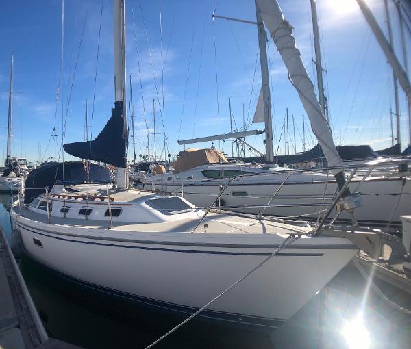 Catalina C34