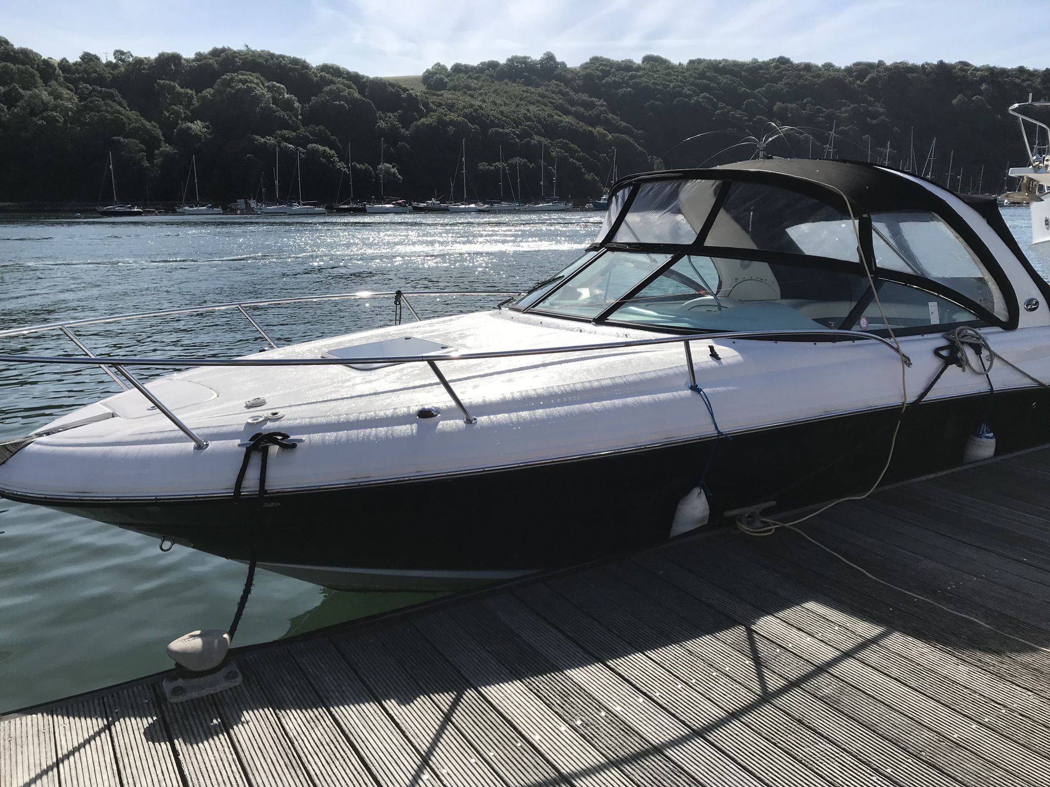 Sea Ray 290 SS
