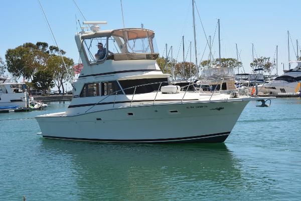 Viking 35 Convertible Starboard Profile