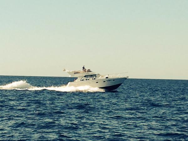 Enterprise Marine 38 SUNQUEST FLY