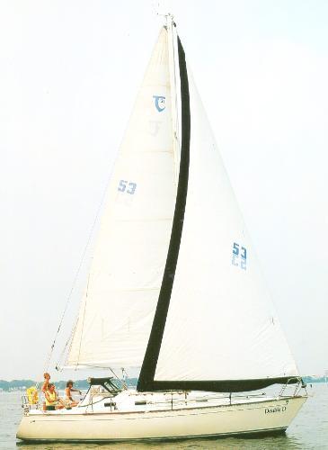 Tartan 31