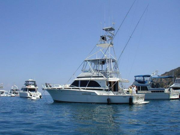 Bertram 46 Sport Fisherman Fintastic