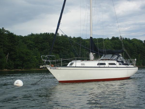 Hunter Cherubini Sloop