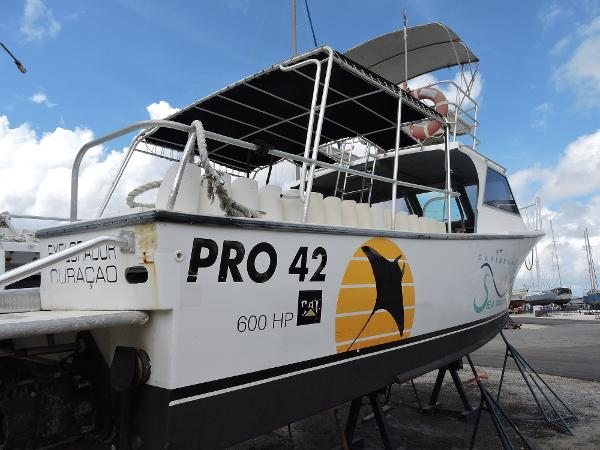 Custom Boats - Rob Shirley Pro 42