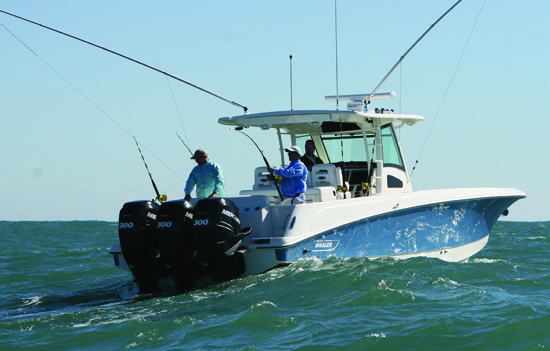 Fish, Fly, Fun on the 370 Outrage