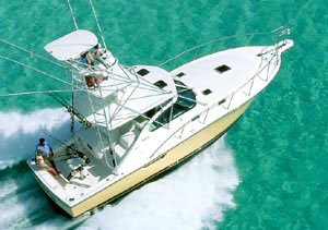 Pursuit 3800 Express: Sea Trial
