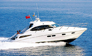 Sealine C39 Coupe — Dressed to Impress