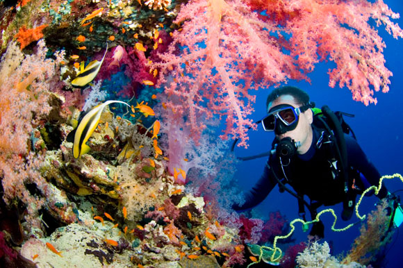 Top Watersports: SCUBA diving