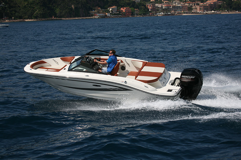 Powerboats: bow rider