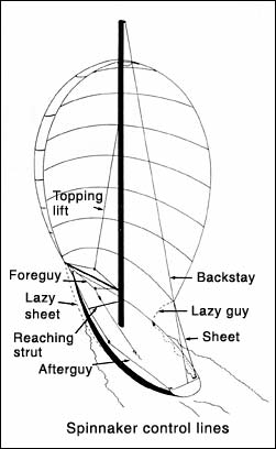 The Spinnaker - Terminology