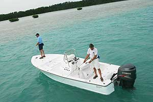 The Outboard Expert: More Muscle From Yamaha