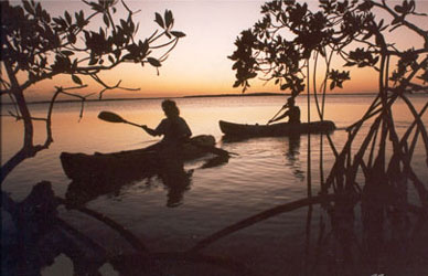 "Going ""Back"" in Time and Place: the Florida Keys Backcountry"