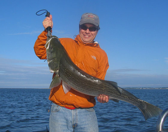 Tips, Chumming for Striped Bass - boats.com