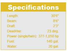 Supersonic 31 specifications