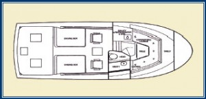 Blackfin 29 combi layout