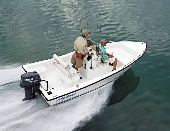 Key Largo and Clearwater: Reintroduced by SAK Marine