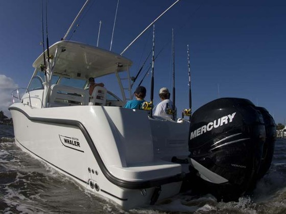 boston whaler conquest 315 verado