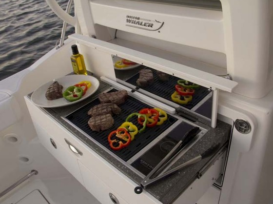 boston whaler conquest 315 summer kitchen