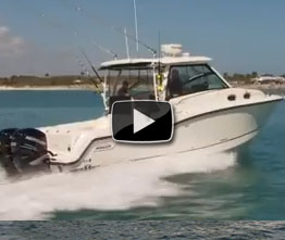 Boston Whaler 315 Conquest video boat review