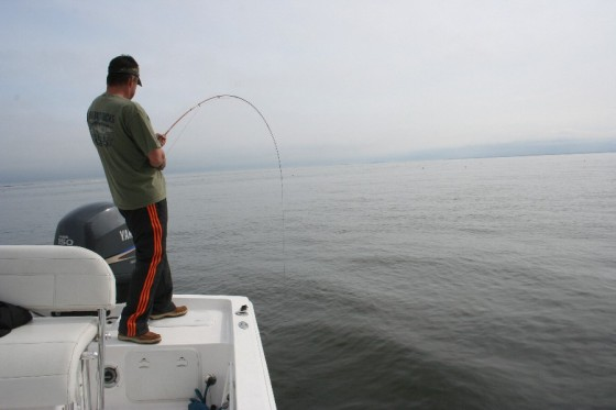 fly fishing on a bay boat