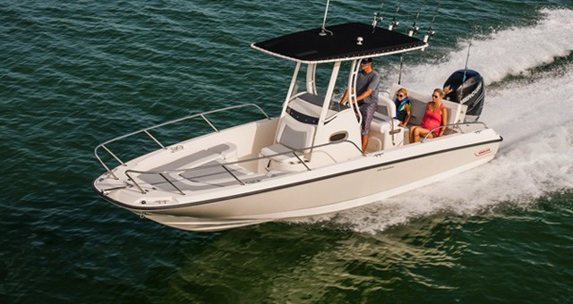 Boston Whaler 240 Dauntless: No Restrictions