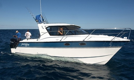 Arrowcat Express 32 Power Catamaran With Purpose Boats Com