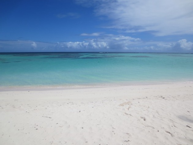 Anegada-beach-British-Virgin-Islands