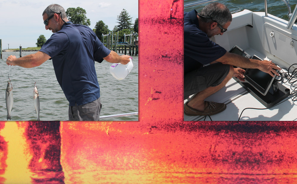 Peripheral Vision: Side-Scanning Fishfinder Myths, Debunked!