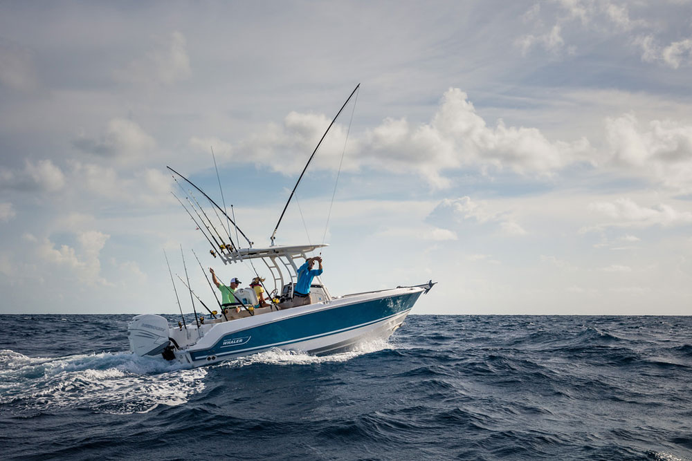 23' isn't a lot of LOA for an offshore fishing machine, but the Outrage 230 is unquestionably up to the task.