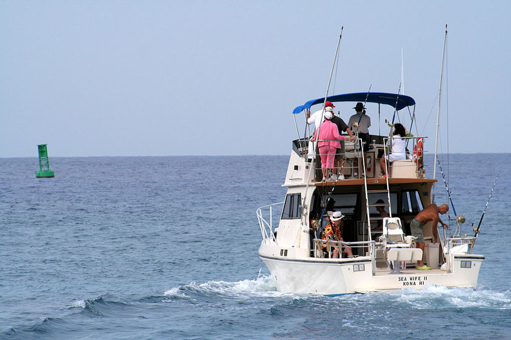 Just outside the sea buoy, big fish prowl at these top bluewater fishing destinations.