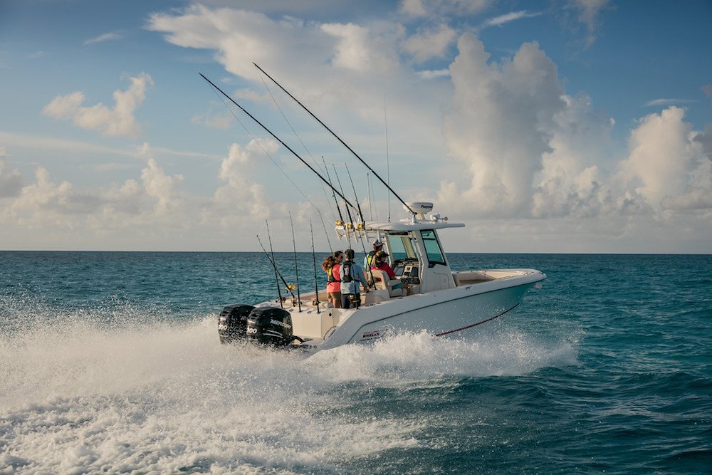 Boston Whaler 280-Outrage_popa 2