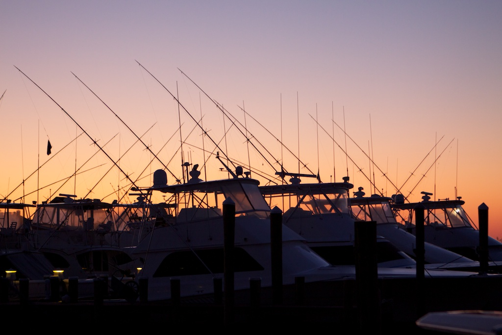 Sportfish yachts sit silhouetted against a rising sun in Ocean City, MD.