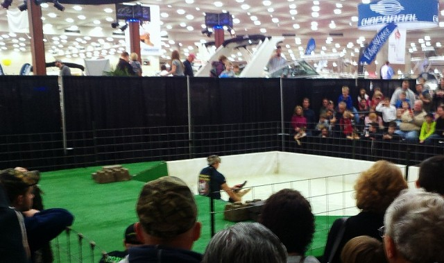 alligator wrestling at baltimore boat show
