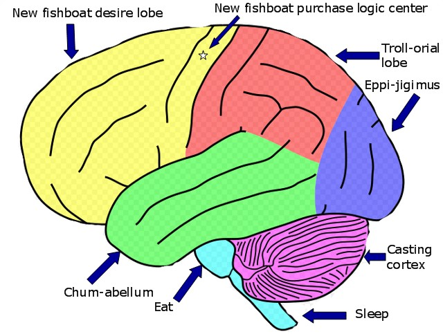 your brain on fishing